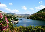 Douro Valley Wine Tasting Tour, Lunch, River Cruise Option. Oporto, PORTUGAL