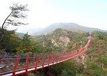 Private DMZ Peace Tour : N.Korea 3rd Invasion Tunnel and Suspension Bridge,