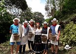 Excursión a plantación de café, Medellin, COLOMBIA