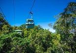 Escapada de un día al teleférico Skyrail sobre la jungla desde Cairns. Cairns y el Norte Tropical, AUSTRALIA