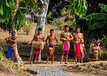 Embera Indigenous Community 3-Hour Tour From Panama City. Gamboa, Panama