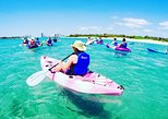 Half Day Island Kayaking and Snorkeling Tour. Gold Coast, AUSTRALIA