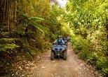 Quad Bike - Farm Forest Ride, Nelson, NUEVA ZELANDIA