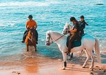 Horseback Riding Tour. Braga, PORTUGAL