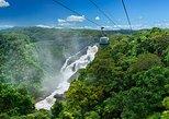Escapada de un día al teleférico Skyrail sobre la jungla desde Port Douglas. Port Douglas, AUSTRALIA