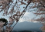 1 day private charter Mt Fuji and Hakone trip with English speaking Guide. Tokyo, JAPAN