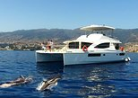 VipDolphins Luxury Whale Watching. Funchal, PORTUGAL
