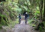 Timber Trail Mountain Bike 2 Day, 1 Night Package, Waitomo, NUEVA ZELANDIA