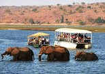 Chobe Full Day Trip. Livingstone, Zimbabwe
