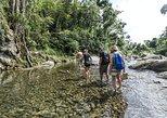 Excursión de aventura de senderismo y natación a El Yunque,