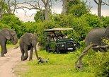 Chobe Day Trip From Livingstone. Livingstone, Zimbabwe