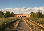 Excursão vinícola no Vale do Uco saindo de Mendoza, Mendoza, ARGENTINA
