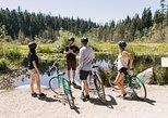 Excursión en bicicleta para grupos pequeños en Stanley Park con opción de bicicleta electrónica.,