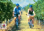Hawkes Bay Wineries Electric Self-Guided Bike Tour. Hastings, New Zealand