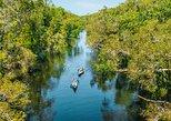 Cruise 'n' Canoe to Australia's Everglades. Noosa y Sunshine Coast, AUSTRALIA
