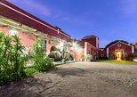 Tour guiado por viñedos, museo del vino, bodega, lagares y degustacion de vinos, Gran Canaria, ESPAÑA
