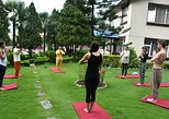 Yoga Experience Day Trip with Private Transfer From Kathmandu, Katmandu, NEPAL