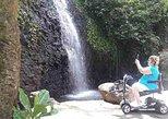Half day tour (8:00am or 01:00pm). Papeete, TAHITI