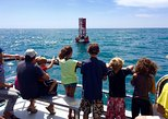 Two-Hour Whale Watching Tours from Oceanside, CA, Carlsbad, CA, ESTADOS UNIDOS