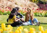 Visita a Keukenhof Gardens y Tulip Fields desde Ámsterdam. Amsterdam, HOLANDA
