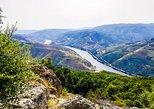 Tour privada no vale do Douro com guia local - Almoço, viagem de barco, e provas. Braga, PORTUGAL