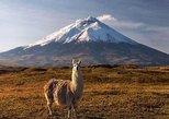 Tour Parque Nacional Cotopaxi: Senderismo y Descenso en Bicicleta todo incluido. Quito, ECUADOR