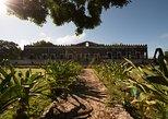 Yaxcopoil Hacienda & Uxmal Plus Cenote from Merida. Merida, Mexico