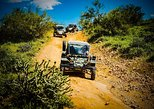3 Hour Guided TomCar ATV Tour through the AMAZING Sonoran Desert!. Phonix, AZ, UNITED STATES