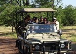 Game Drive & Rhino Safari Experience,