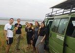 3 days Murchison falls Uganda Safari. Kampala, UGANDA