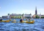 Stockholm City Kayak Tour,