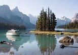 Excursión de 5,5 horas de la fauna, flora y cascadas desde Jasper.,