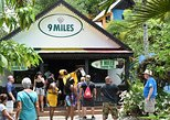 Day Trip to Bob Marley's Nine Mile and Dunn's River Falls from Falmouth. Falmouth, JAMAICA