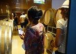 Private Wine Tour - Colonia Caroya,