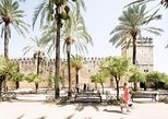Cordoba Full-Day Tour with Great Mosque Entry from Malaga. Malaga, Spain