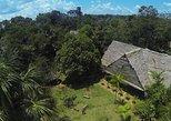 3-Day Amazon Jungle Tour at Sinchicuy Lodge. Iquitos, PERU