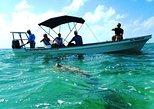 Excursão de dia inteiro em Sian Ka'an saindo de Tulum com mergulho com snorkel. Tulum, MÉXICO