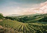 Wine day tour from Ancona, Ascoli Piceno, ITALIA