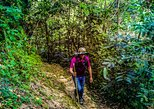 Trekking To Minca. Santa Marta, COLOMBIA