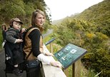 Zealandia: The Exhibition and Sanctuary Valley, Wellington, NUEVA ZELANDIA