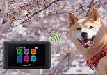 Unlimited WiFi Router Hotspot Naha (Okinawa) Airport 4G LTE plus Free Power Bank. Naha, JAPAN