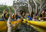 Margaret River Canoe Tour Including Lunch. Margaret River, AUSTRALIA