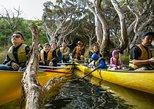 Margaret River -Tour en Canoas con almuerzo incluido. Margaret River, AUSTRALIA