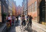 Excursión en bicicleta por Copenhague para grupos pequeños. Copenhague, DINAMARCA