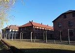 One day tour to Auschwitz-Birkenau from Warsaw with private transport. Warsaw, Poland
