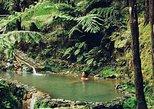 Center of the Island - Fire Lake, Thermal Pool, Pineapple and Tea Plantation. Ponta Delgada, PORTUGAL