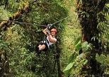 Excursión combinada a Selvatura Park desde Monteverde. Monteverde, COSTA RICA