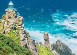 Cape Point and Boulder's Beach Penguins Tour from Cape Town,