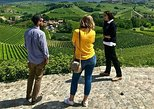 Langhe Wine Tour and Tasting - One day with a Somm. Langhe-Roero y Monferrato, ITALY