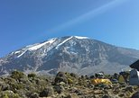 Kilimanjaro Day Trip from Moshi. Moshi, Tanzania